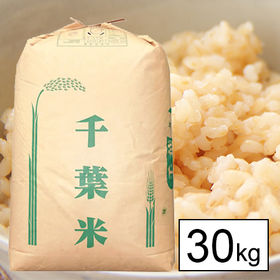 【30kg】 令和元年産 千葉県産コシヒカリ 1等玄米30k...