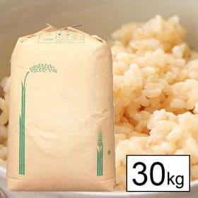 【30kg】 令和元年産武川米農林48号-ヨンパチ 1等玄米...