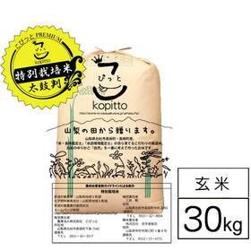 【30kg】 特別栽培米 令和元年産山梨県産コシヒカリ 1等...