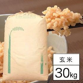 【30kg】 令和元年産 山梨県産ミルキークイーン 1等 玄...