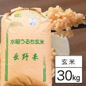 【30kg】 令和元年産 長野県八重原産コシヒカリ JA佐久...
