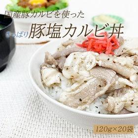 【120g×20袋】塩豚カルビ丼の具