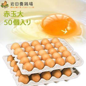 【計50個】赤玉 大50 ※破卵保障10個含む
