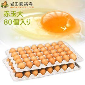 【計80個】赤玉 大80 ※破卵保障10個含む