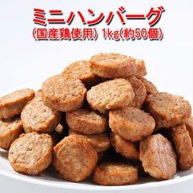 【1kg】ハンバーグ メガ盛り(約50個)一口サイズのミニハ...
