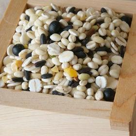 【500g×2パック】十五穀米