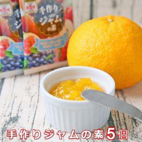 【30g×5個】コトコト煮込む手間いらず!レンジで5分 簡単...