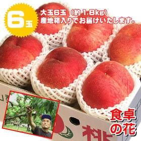 【予約受付】7/1~順次出荷【6玉】山梨 桃名人笠井農園の桃