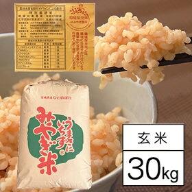 【30kgx1袋】宮城県産ひとめぼれ(特別栽培米・令和元年産...