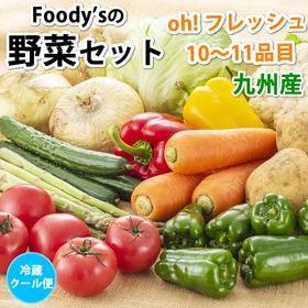 〈クール便でお届け〉野菜セット 10~11品目 九州産