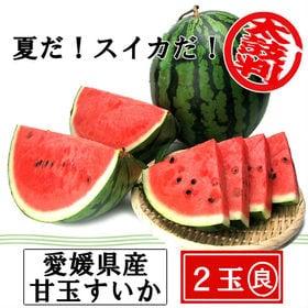 【2玉(3.5-4.5kg×2玉)】愛媛産 甘玉すいか(良品...