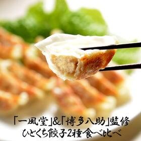 【2種/計120個】「一風堂」&「博多八助」監修 ひとくち餃子セット | 博多で愛されている名店のひとくち餃子食べ比べをご家庭でお楽しみいただけます。