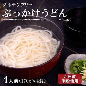美人麺(ぶっかけうどん)4食セット