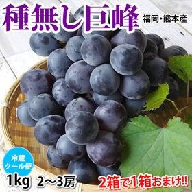 【予約受付】7/20~順次出荷【1kg 2~3房】福岡・熊本...