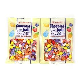 【2コ入り】高岡食品工業 チョコレートボール5MIX