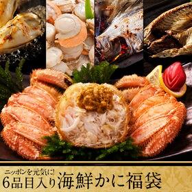 【3.0kg】ニッポンを元気に!6点入り海鮮ふっこう福袋 産...