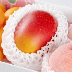 フルーツセット(マンゴー・桃・ハウス蜜柑)