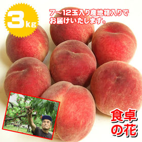 【予約8月配送分受付】8/1~順次出荷【3kg】山梨 桃名人...