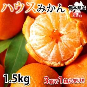 【約1.5kg】熊本県産 秀品 ハウスみかん