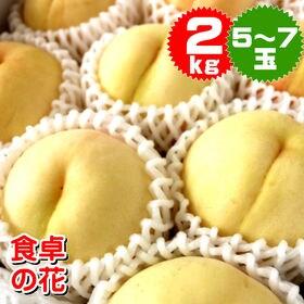 【予約受付】7/20~順次出荷【2kg/5~7玉】清水白桃2...