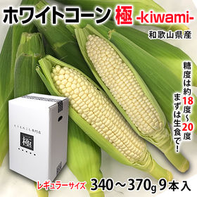 【計9本入】和歌山県 ホワイトコーン極‐kiwami‐レギュ...