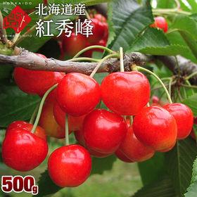 【予約受付】7/29~順次出荷【500g】北海道産 さくらん...