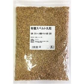 【900g】有機スペルト小麦丸粒