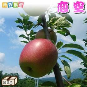 【予約受付】8/20~順次出荷【約3kg】青森県産 りんご(...