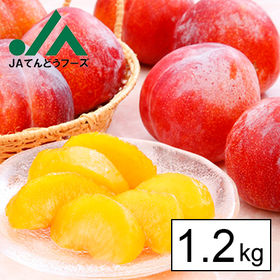【予約受付】9/1~順次出荷【約1.2kg】JA共選秀品 山...