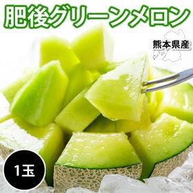 【1玉 約1.4~1.8kg】熊本県産肥後グリーンメロン
