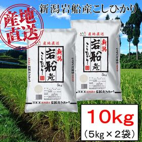 【10kg】新潟県岩船産 コシヒカリ 令和2年産