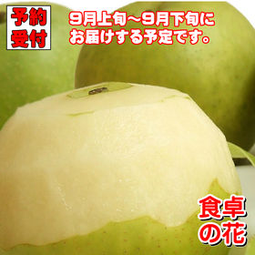 【予約受付】9/5~順次出荷【10kg/24-40玉】20世...