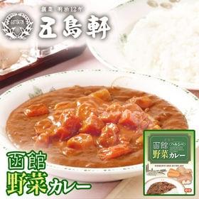 【計400g(200g×2個)】五島軒 野菜カレー 北海道