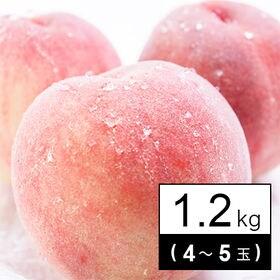 【1.2kg箱】フルーツソムリエが選んだ旬の桃(4-5玉)