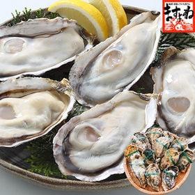 【1kg前後(12粒入り)】兵庫県室津産 殻付き牡蠣(冷凍)