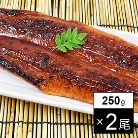 【2尾(約200-250g)】特大うなぎ蒲焼 タレ、山椒付き