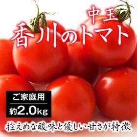 【約2kg】香川県産 トマト フルティカ ジューシーな果汁の...