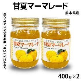 【400g×2本】甘夏マーマレード 堀永殖産