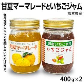 【各400g×2本】甘夏マーマレードといちごジャム 堀永殖産