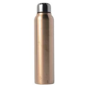 【555ml】銀イオンステンレス水筒