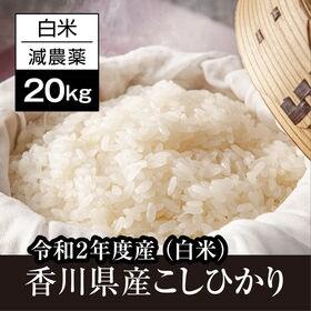 【20kg】香川県産コシヒカリ白米 令和2年度産《備蓄にも最...