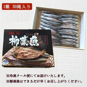 【30尾】北海道 本ししゃも(雄)