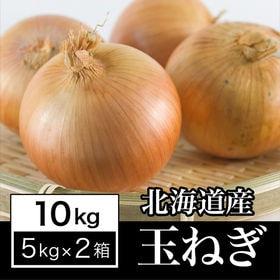 【約10kg】北海道産 良質 玉ねぎ 夏の太陽をたっぷり浴び...