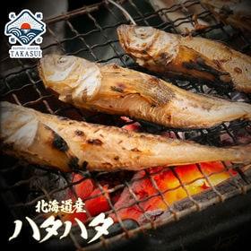 【1kg前後(500g前後×2パック)】北海道産ハタハタ