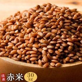 【30kg(500g×60袋)】国産赤米 (雑穀米・チャック...