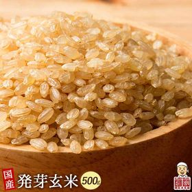 【500g(500g×1袋)】国産発芽玄米 (雑穀米・チャッ...
