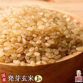 【1kg(500g×2袋)】国産発芽玄米 (雑穀米・チャック...