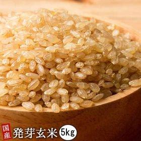 【5kg(500g×10袋)】国産発芽玄米 (雑穀米・チャッ...