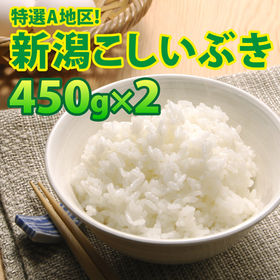 【450g×2袋】令和2年産 新米 大人気 新潟県上越産こし...
