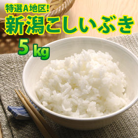 【5kg×1袋】令和2年産 新米 大人気 新潟県上越産こしい...